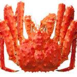 蟹の種類や「蟹」の漢字の由来は?