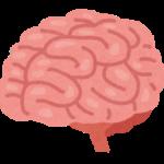 効率が上がる脳の働きとは?ストレス症状をチェック?