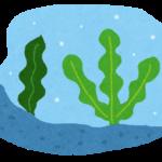 海藻のネバネバが食物繊維?芋は?体の酸化を防ぐ食べ物は?